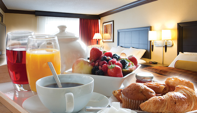 Americana Niagara Falls hotel package deals